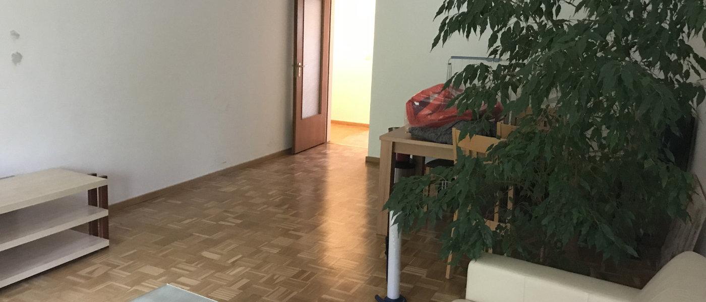 Umzug-Nagler-05